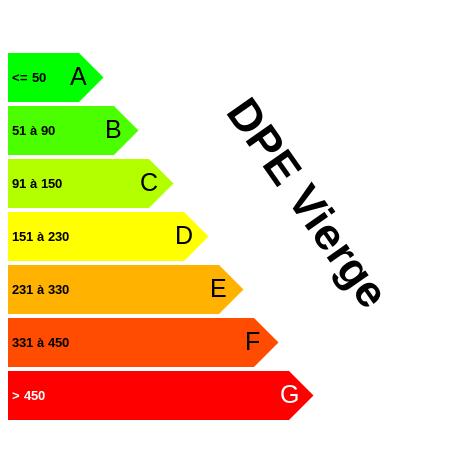 DPE : https://graphgen.rodacom.net/energie/dpe/dpevierge/0/0/0/-1/450/450/graphe/habitation/white.png